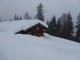 Schnee hat\'s genug, aber die Qualität...