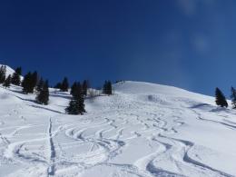 ...aber jede Menge Abfahrtsspuren von Freeridern, die aus dem Skigebiet herüberqueren
