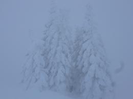 tiiiiiiiiiefster Winter