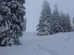 toller Schnee