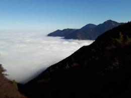 über der Nebelsuppe
