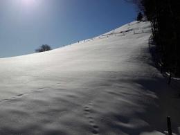 tiefster Winter