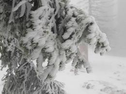 wieder richtig Winter