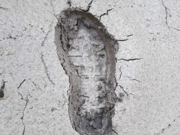 bei all den Footprint-Diskussionen, also das wäre meiner!