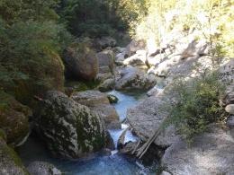 wildes Gewässer