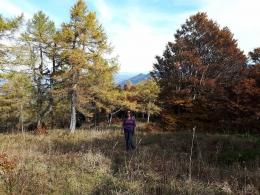 Mama im Herbstwald