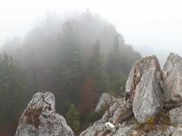 am Gipfelgrat, kurz vor dem Ziel