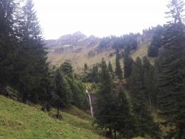 Brunnenau