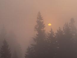 dann der Nebel, die Sonne hinter dem Gruberhörndl